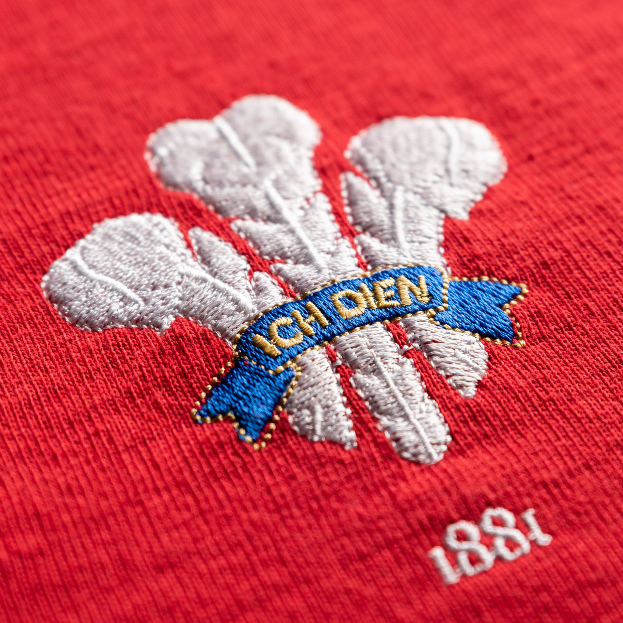 Wales 1881 Vintage Rugby Shirt_logo