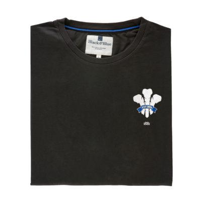 Wales 1881 Asphalt Tshirt_Folded