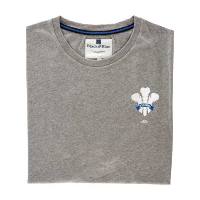 Wales 1881 Grey Tshirt_Folded