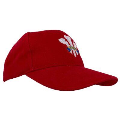 Wales Baseball Cap_Side